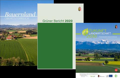 Weiterleitung zur Homepage des Landes OÖ